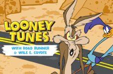 coyote vs acme pelicula animada