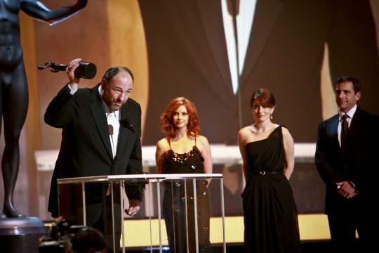 Screen Actors Guild Awards 2008