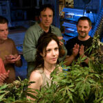 Segunda Temporada de Weeds en The Film Zone