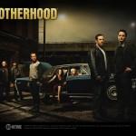 Serie Brotherhood