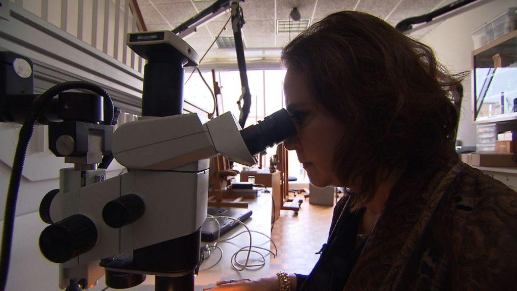 Dianne restorer microscope