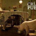 Día Nacional del Cine Mexicano por el Once