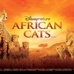 Película Felinos de África